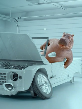 Instant Finance hippo in a broken down car