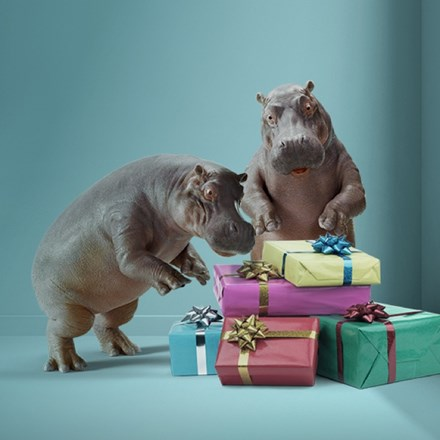 Instant Finance hippos looking at wrapped presents