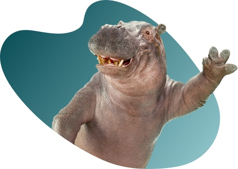 Instant Finance Hippo waving